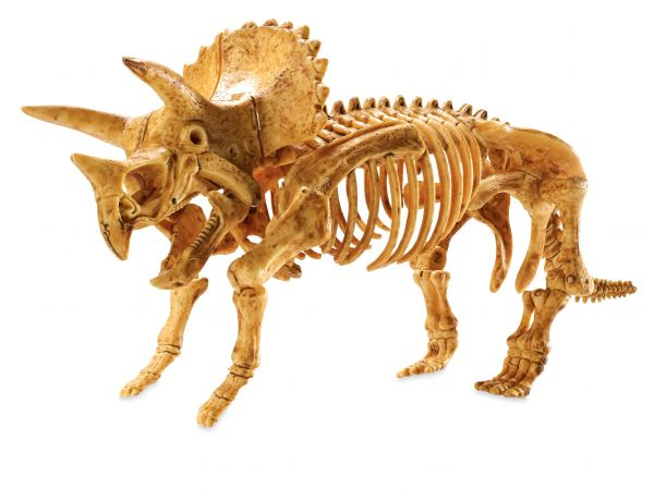 Mindware Dig It Up! Triceratops Model