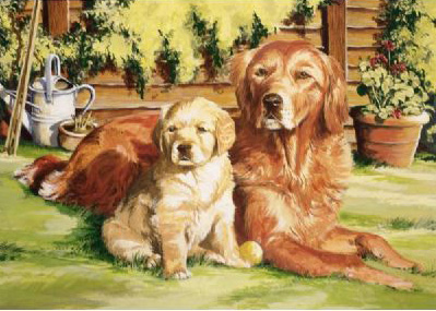 Reeves Large Painting by Numbers: Dog World, Advanced