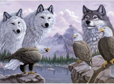 Royal & Langnickel Painting by Numbers Adult Sets: Wolves & Eagles