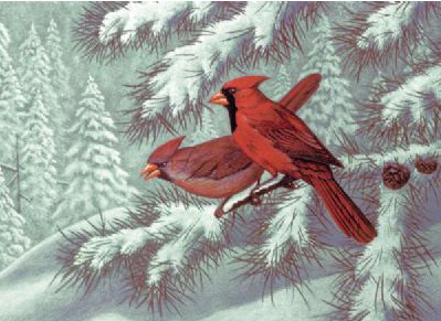 Royal & Langnickel Painting by Numbers Adult Sets: Cardinals
