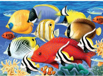 Royal & Langnickel Painting by Numbers Junior Large Sets: Tropical Fish