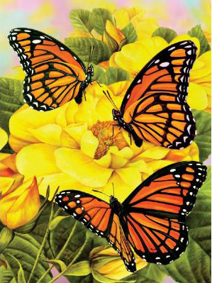 Royal & Langnickel Painting by Numbers Junior Small Sets: Majestic Butterfly