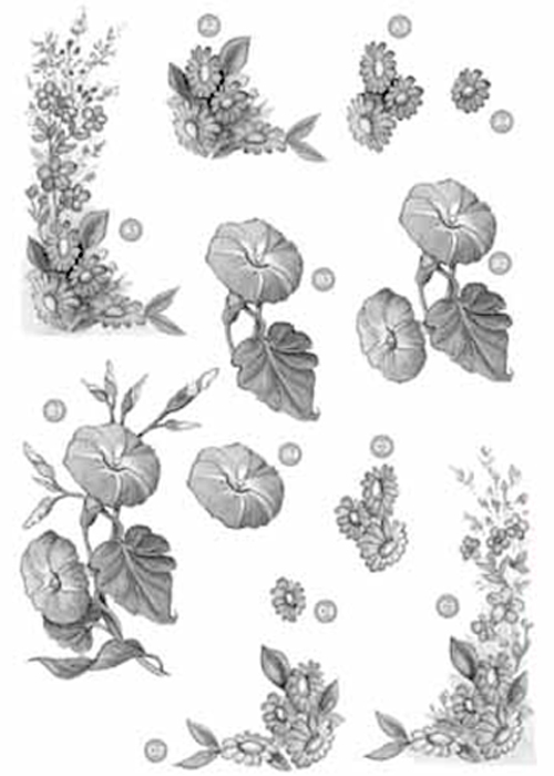 Ecstasy Crafts Craft Uk Floral - Corners/morning Glories - Silver