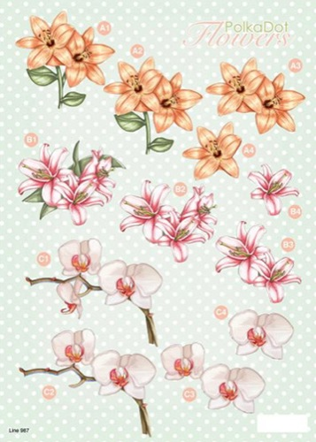 Ecstasy Crafts Craft Uk 3-D Precut Sheet Flowers - Lilies