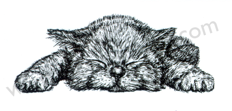 "Nellie's Choice Clear Stamps Animals Series ""kitten"""