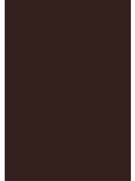 Cardstock 25 sheet package-Brown