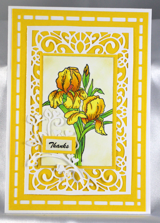Frog's Whiskers Stamps - Iris