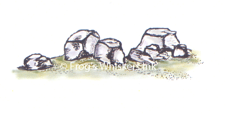 Frog's Whiskers Ink Frog's Whiskers Stamps - Rocks
