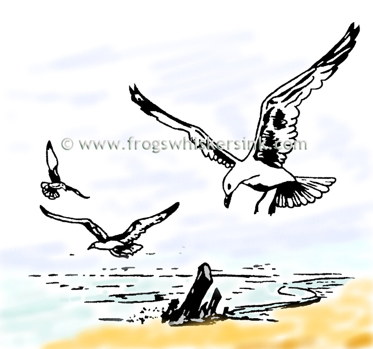 Frog's Whiskers Ink Stamps- Sea Gulls