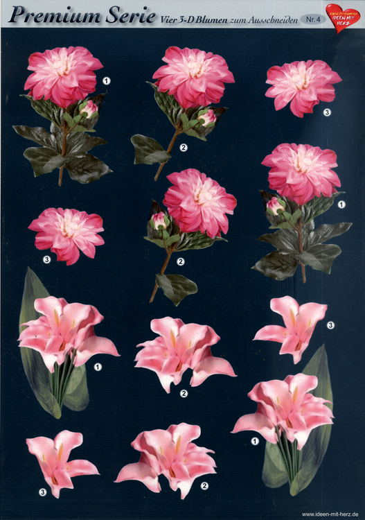 3D Premiumserie, 6 pcs Flowers 04 Cutting Sheets