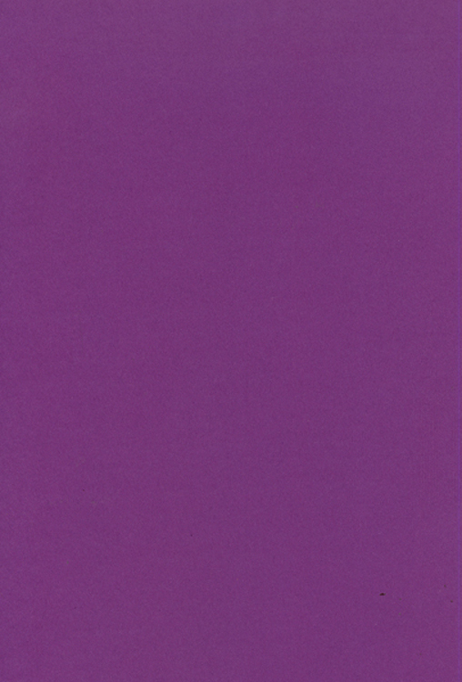 Creative Expressions Foundation Cardstock 25 Shts 220 Gsm - Amethyst