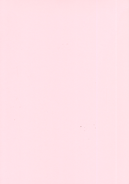 Creative Expressions Foundation Cardstock 25 Shts 220 Gsm - Pink