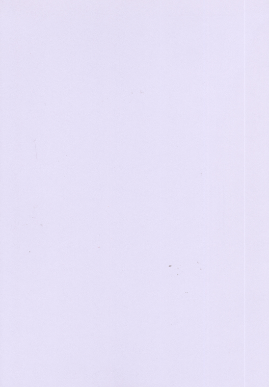Foundation Cardstock  25 Shts 220 Gsm - Wisteria