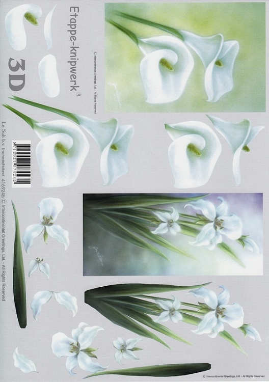 Ecstasy Crafts Le Suh 3-D Step By Step Print Lily
