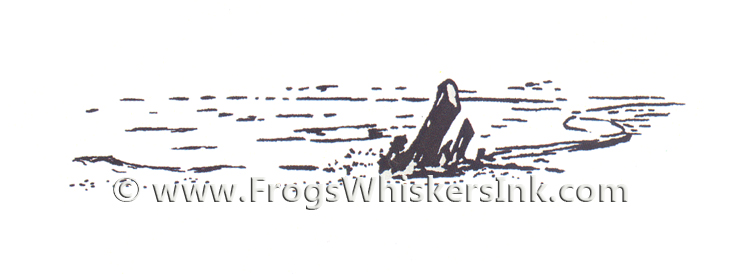 Frog's Whiskers Ink Stamps - Shoreline