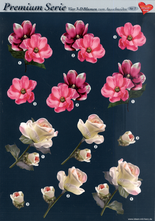 Hearty Crafts 3D Premiumserie, 6 Pcs Flowers 07 Cutting Sheets