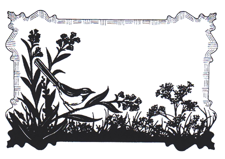 Creative Expressions Cling Stamps - Birdsong Meadow