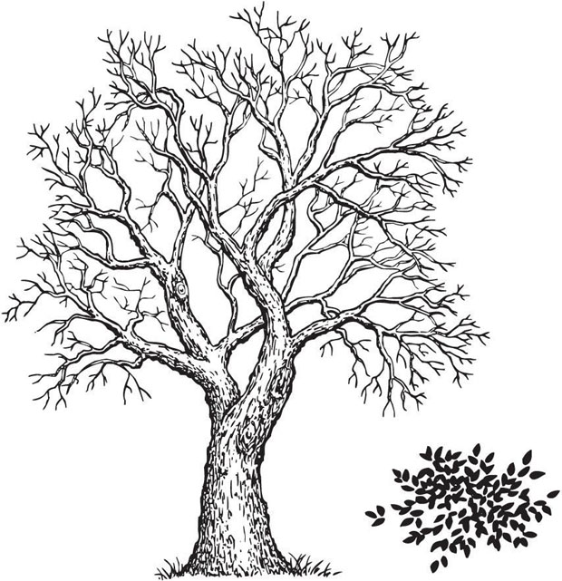 Sarasota Stamps Mounted Rubber Stamp: Tree & Foliage, 2-Pieces