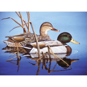 "Royal & Langnickel® Painting by Numbers™ 12 3/4 x 15 3/4 Adult Set Blue Water Mallards: 12 3/4"" x 15 3/4"", (model PAL38), price per set"