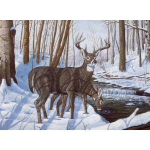 "Royal & Langnickel® Painting by Numbers™ 12 3/4 x 15 3/4 Adult Set Winter Bliss: 12 3/4"" x 15 3/4"", (model PAL43), price per set"