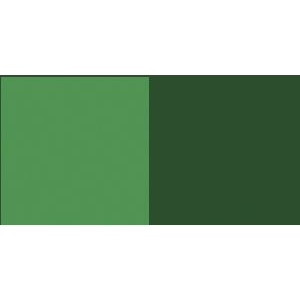 Wicked Colors™ Airbrush Paint 2oz Detail Moss Green: Green, Bottle, 2 oz, Airbrush, (model W059-02), price per each