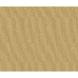 "Strathmore® 500 Series 25"" x 19"" Golden Brown Charcoal Sheets: Brown, Laid, Sheet, 25 Sheets, 19"" x 25"", Charcoal, 64 lb, (model ST60-126), price per sheet"