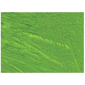 Williamsburg® Handmade Oil Paint 37ml Cadmium Green: Green, Tube, 37 ml, Oil, (model 6001186-9), price per tube