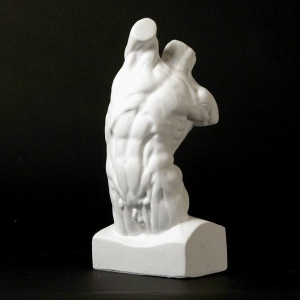 Natural Pigments Drawing Plaster Cast Male Torso (Anatomical)