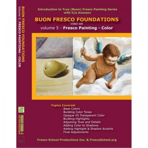 Natural Pigments Buon Fresco Foundations DVD