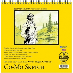 "Canson® Foundation Series 22"" x 30"" Watercolor Cold Press Lightweight 100-Sheet Pack: White/Ivory, Sheet, 22"" x 30"", Cold Press, (model C100511120), price per pack"