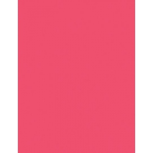 "My Colors Heavyweight 100 lb. Cardstock Watermelon Pink 8.5 x 11: Red/Pink, Sheet, 25 Sheets, 8 1/2"" x 11"", Smooth, 100 lb, (model E011103), price per 25 Sheets"