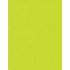 "My Colors Heavyweight 100 lb. Cardstock Lemon Lime 8.5 x 11: Green, Sheet, 25 Sheets, 8 1/2"" x 11"", Smooth, 100 lb, (model E015501), price per 25 Sheets"