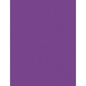 "My Colors Heavyweight 100 lb. Cardstock Purple Heart 8.5 x 11: Purple, Sheet, 25 Sheets, 8 1/2"" x 11"", Smooth, 100 lb, (model E016601), price per 25 Sheets"