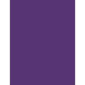 "My Colors Heavyweight 100 lb. Cardstock Cyber Grape 8.5 x 11: Purple, Sheet, 25 Sheets, 8 1/2"" x 11"", Smooth, 100 lb, (model E016602), price per 25 Sheets"
