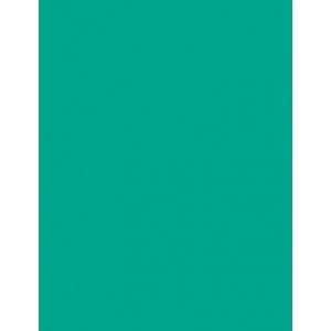 "My Colors Heavyweight 100 lb. Cardstock Tropical Sea 8.5 x 11: Green, Sheet, 25 Sheets, 8 1/2"" x 11"", Smooth, 100 lb, (model E017702), price per 25 Sheets"
