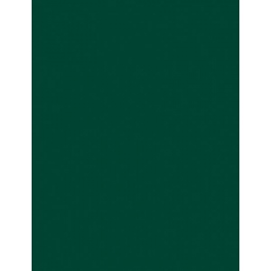 "My Colors Heavyweight 100 lb. Cardstock Hunter Green 8.5 x 11: Green, Sheet, 25 Sheets, 8 1/2"" x 11"", Smooth, 100 lb, (model E017703), price per 25 Sheets"