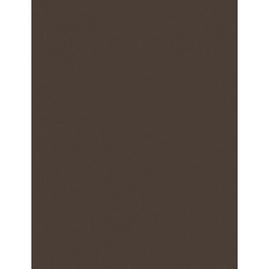 "My Colors Heavyweight 100 lb. Cardstock Dark Molasses 8.5 x 11: Brown, Sheet, 25 Sheets, 8 1/2"" x 11"", Smooth, 100 lb, (model E019901), price per 25 Sheets"