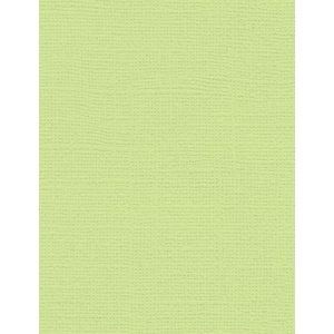 "My Colors Canvas 80 lb. Textured Cardstock Lime Pop 8.5 x 11: Green, Sheet, 25 Sheets, 8 1/2"" x 11"", Canvas, 80 lb, (model E055517), price per 25 Sheets"