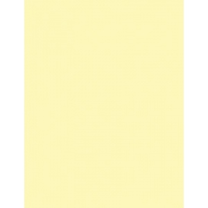 "My Colors Classic 80 lb. Cardstock Yellow 12 x 12: Yellow, Sheet, 25 Sheets, 12"" x 12"", Smooth, (model T044409), price per 25 Sheets"