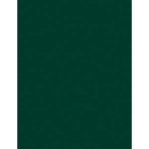 "My Colors Classic 80 lb. Cardstock Forest Green 12 x 12: Green, Sheet, 25 Sheets, 12"" x 12"", Smooth, (model T045514), price per 25 Sheets"