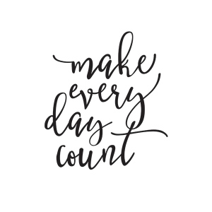 Simple Stories - Carpe Diem - Make Every Day Count Black Planner Decal