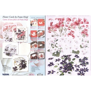 Reddy Card Kit- 3D Floral - Franz Heigl 1: 3 Cards, Envelopes And Precut Sheet