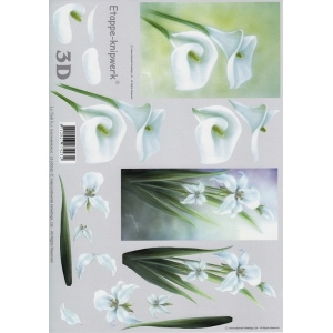 Le Suh 3-D step by Step PrInt Lily