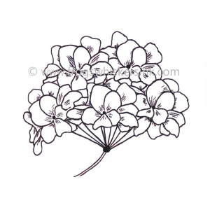 Frog's Whiskers Ink Stamps - Hydrangea Flower