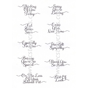 Petite Scribbled Sentiments 'Occasions' Clear Stamp Set