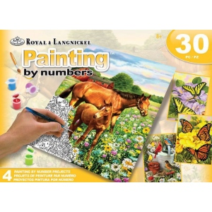 Royal & Langnickel Art Adv Paint By Number - Fields Box Set