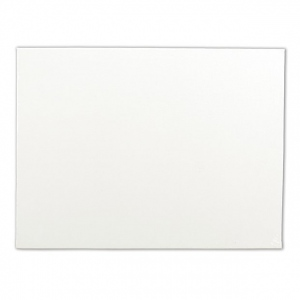 "Winsor & Newton™ Artists' Stretched Canvas Board 16"" x 20"" : 16"" x 20"", Panel/Board, (model 6224270), price per each"