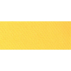 "Canson® Mi-Teintes® 19"" x 25"" Pastel Sheet Pack Canary: Yellow, Sheet, 19"" x 25"", Rough, (model C100511241), price per sheet"