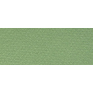 "Canson® Mi-Teintes® 8.5"" x 11"" Pastel Sheet Pad Green: Green, Sheet, 8 1/2"" x 11"", Rough, (model C100511310), price per sheet"