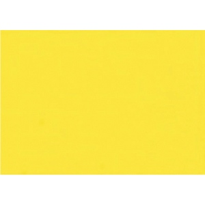 Gamblin Artists' Grade FastMatte Alkyd Oil Paint 150ml Cadmium Yellow Light: Yellow, Tube, 150 ml, Alkyd Oil